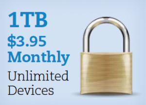 1TB for $3.95 per month
